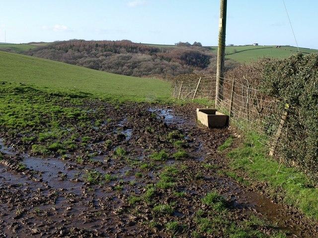 Drinking trough in field near Wanhill