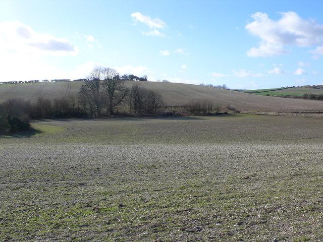 Barrow near Maiden Castle, Dorchester