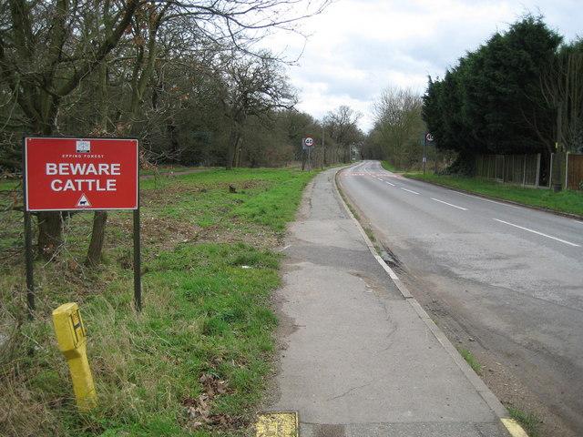 Sewardstonebury: Bury Road
