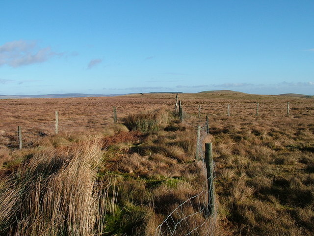 Boundary fence on Black Hill