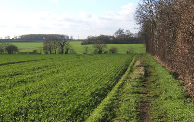Path crossing fields between Crowfield village and the church