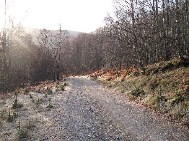 Forest road, Bhlàraidh