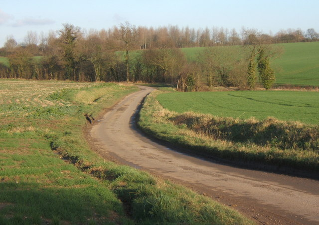 Looking along Spring Lane, near Crowfield