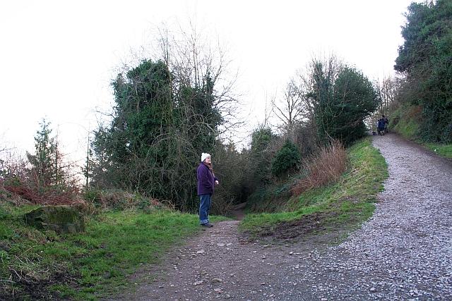 Start of the Alice Betteridge Walk