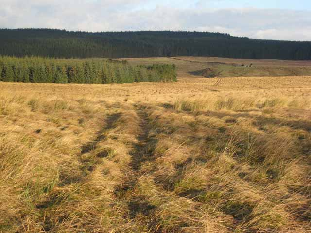 Open moorland south of Haining Head