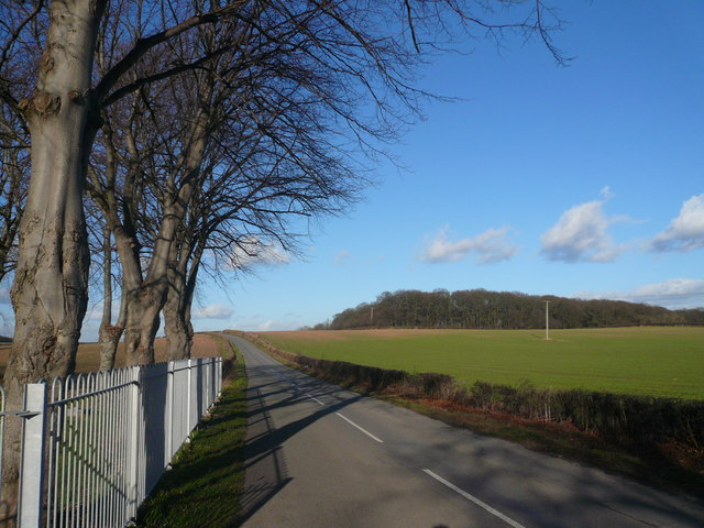 Road View - Leaving Whaley Thorns Cemetery
