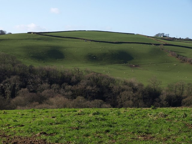 Fields below Yarnscombe