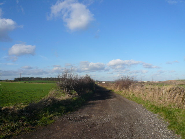 Whaley Common - Bridleway