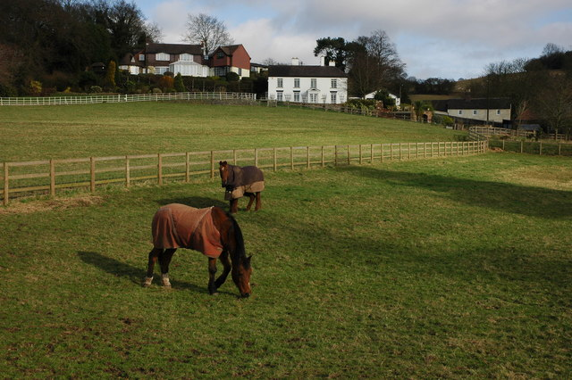 Horses and houses in Clent