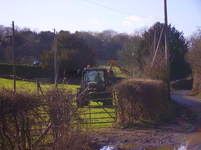 Bullington - Hedge Cutting