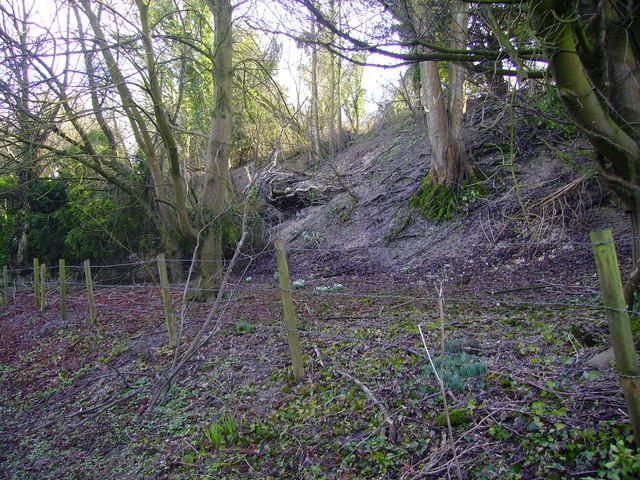 Bullington - Chalk Quarry