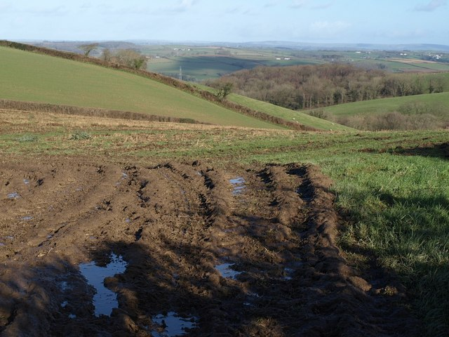 Field near Wanhill