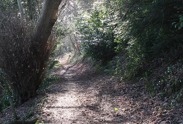 The Alice Betteridge Walk, North Hill
