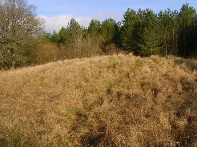 Long barrow, Vernditch Chase