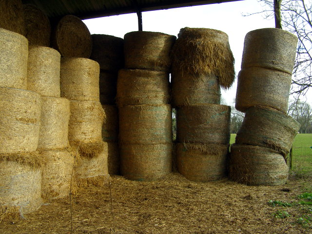 Barn contents, Vernditch Lodge