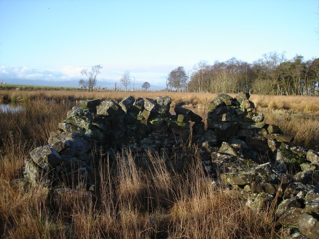 Sheepfold on the south side of Blaze Fell