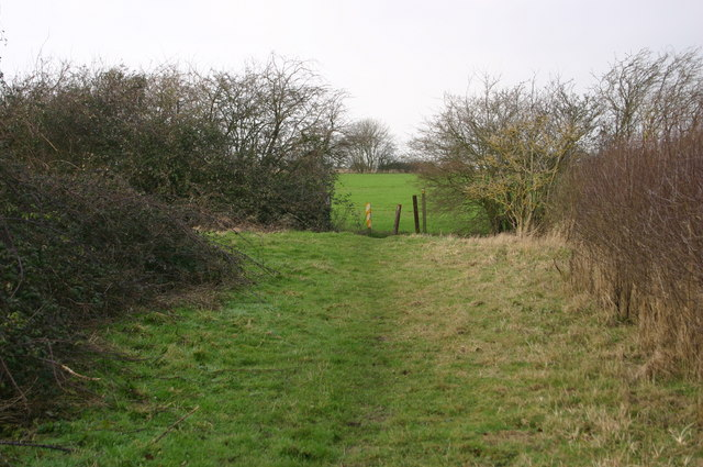 The Butts Bridleway