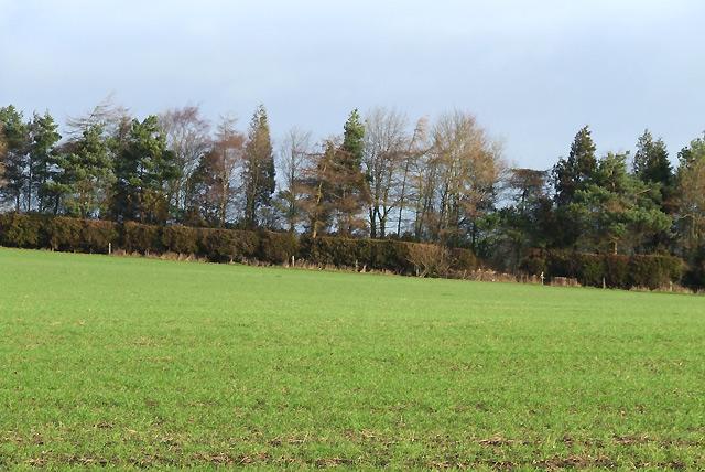 Farmland near Brockton, Shropshire