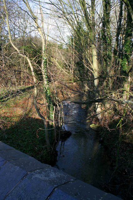The River Devon at Knipton