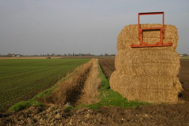 Haystack by Turf Fen Road