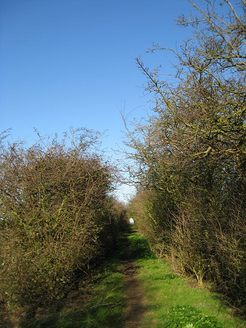 Clenchwarton Parish Walk