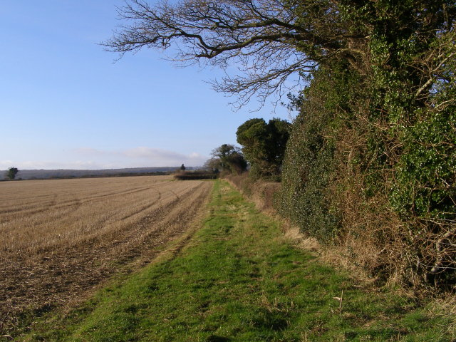 Edge of field, Martin