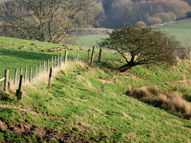 Edge of The Wolds, Old Bolingbroke