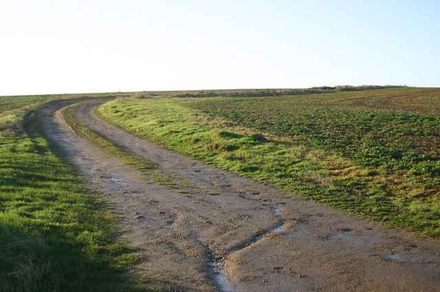 Farm track at The Parks