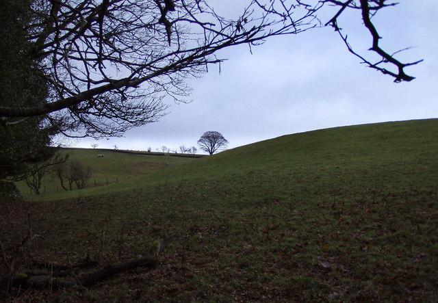 Brooklands Hill