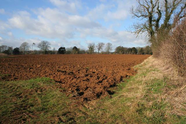 Farmland by Belvoir Road