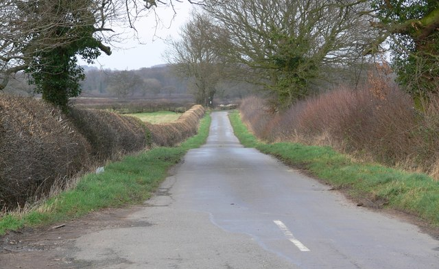North along Foxcovert Lane