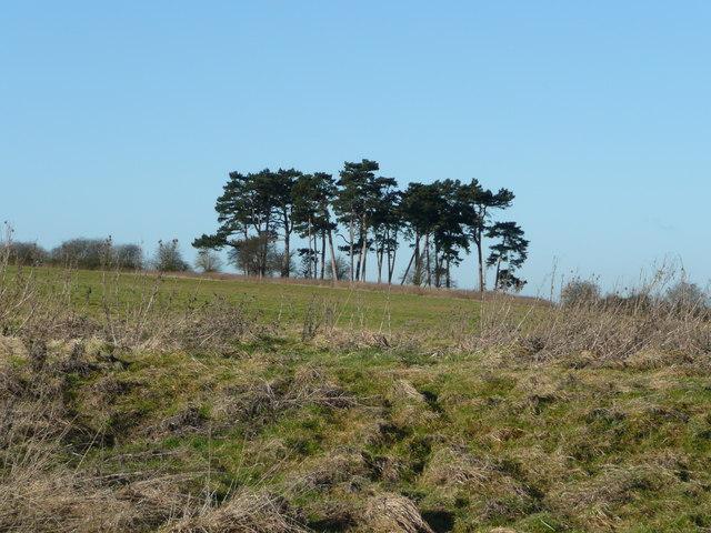 View west of Upper Copcourt Farm