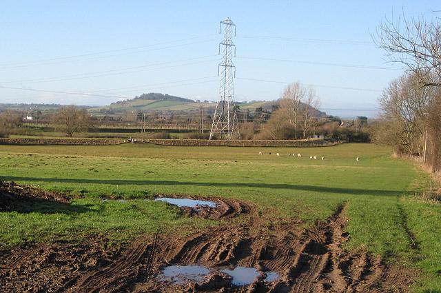 Power lines through pasture