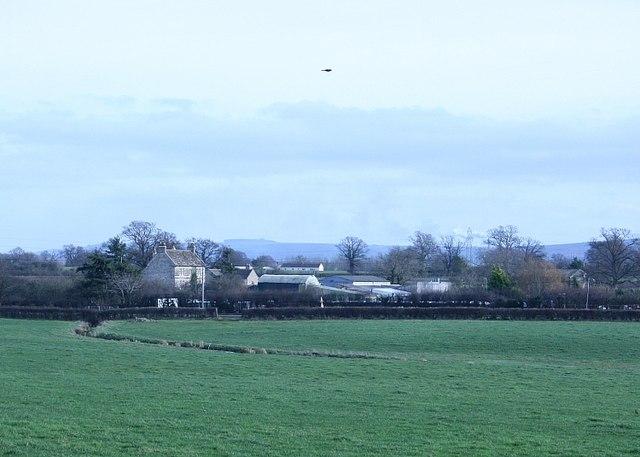 2008 : Dillybrook Farm