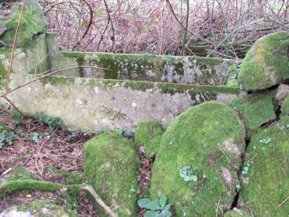 Disused trough