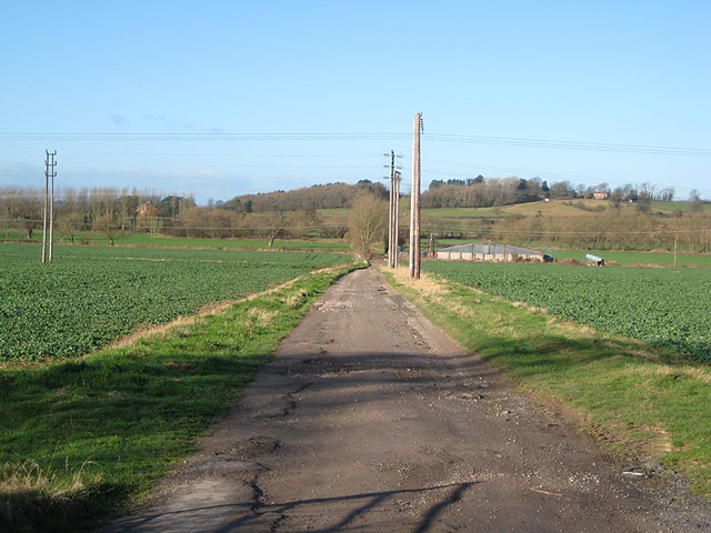 Track through farmland to the River Frome