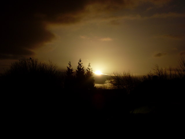 Sunrise over trees in Linnvale
