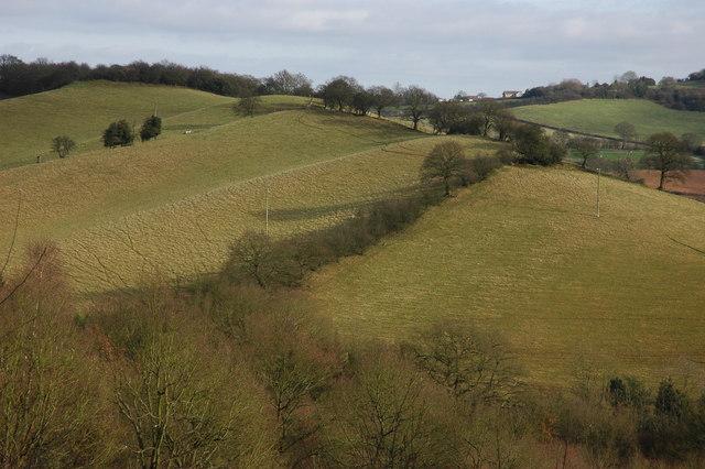 Fields above Daleswood Farm