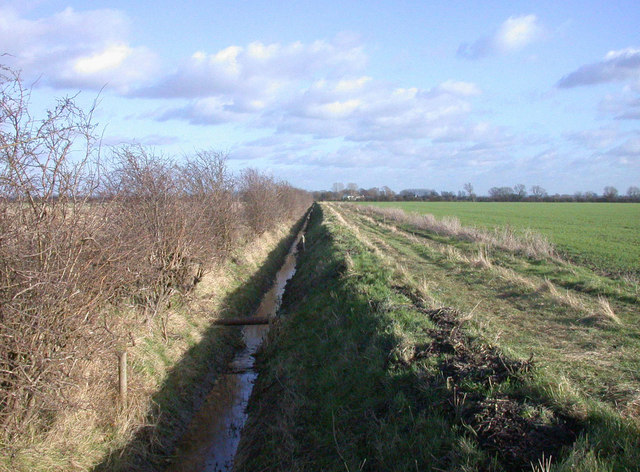 Ditch in farmland near Waterbeach Airfield