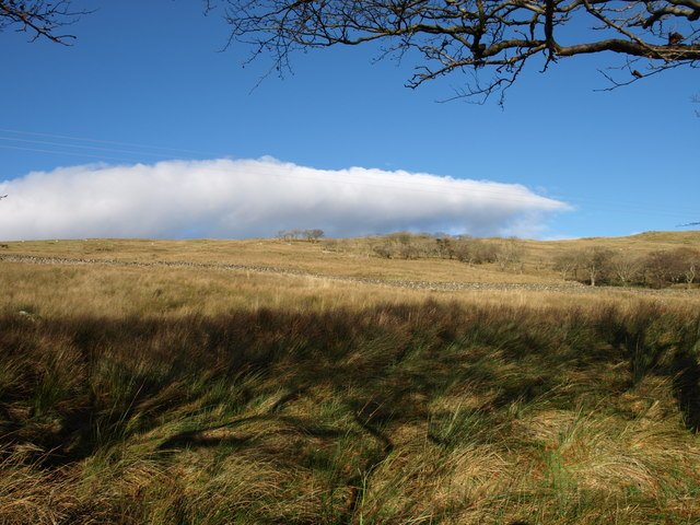 Moorland, near Largs