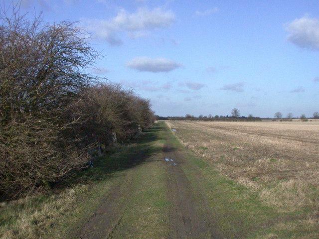 Green lane to Denny Abbey