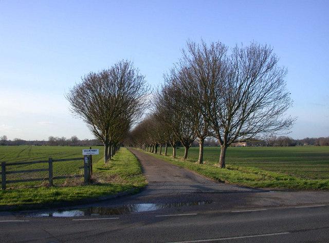 Private avenue to Biggin Abbey
