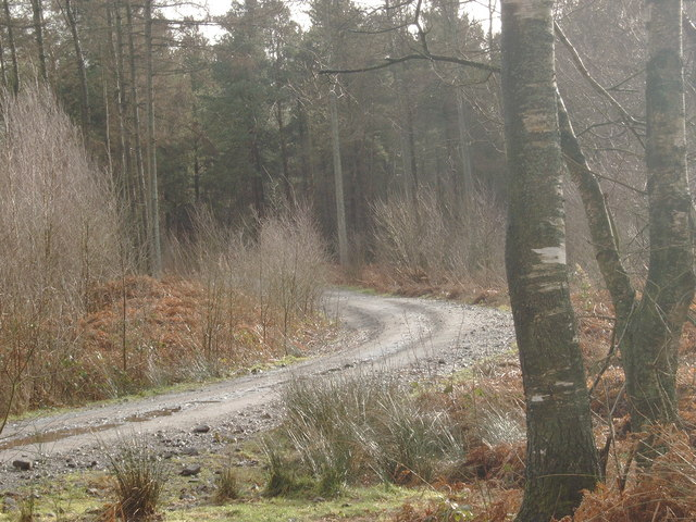 Forestry Road, Heathhall