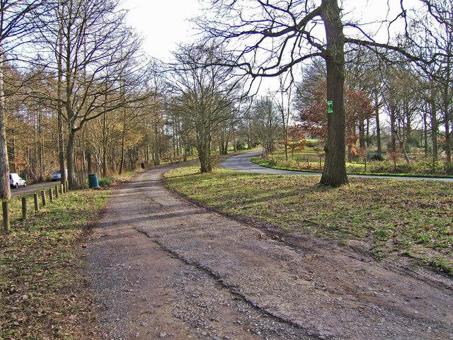 Eymore Wood Car Park