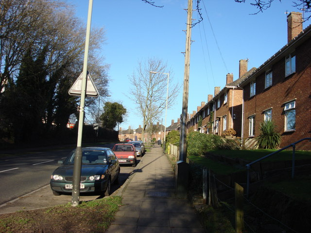 Bluebell Road