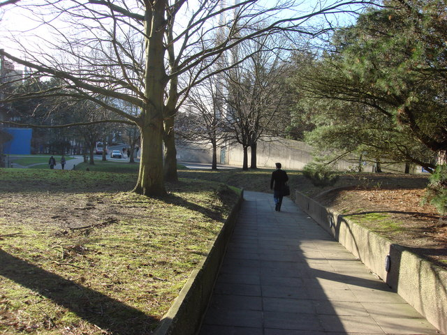 Footpath inside the University of East Anglia's grounds