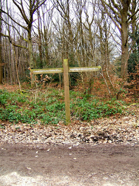 Waymark in Wyre Forest Car Park
