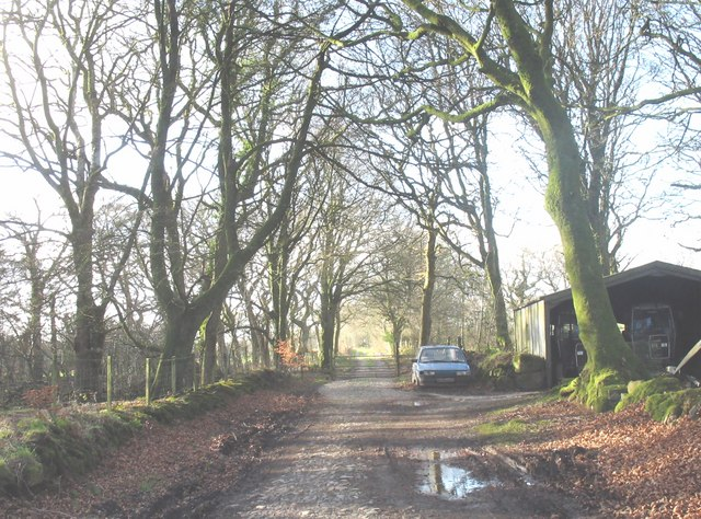 The now largely disused long drive to Trallwyn Hall