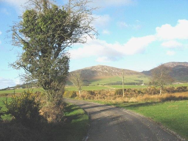 Farm road to Cae Cribyn and Coed y Garth Farms