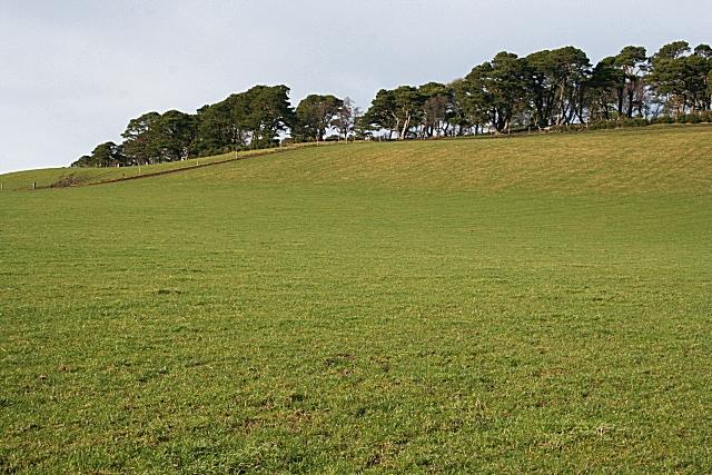Ten Rood Hill (1)